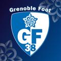 GF38 - CARRÉ PARTENAIRE